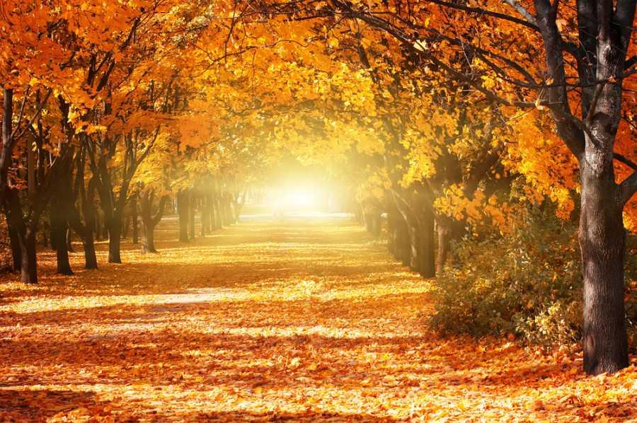 Най-добрите Last minute оферти през есента
