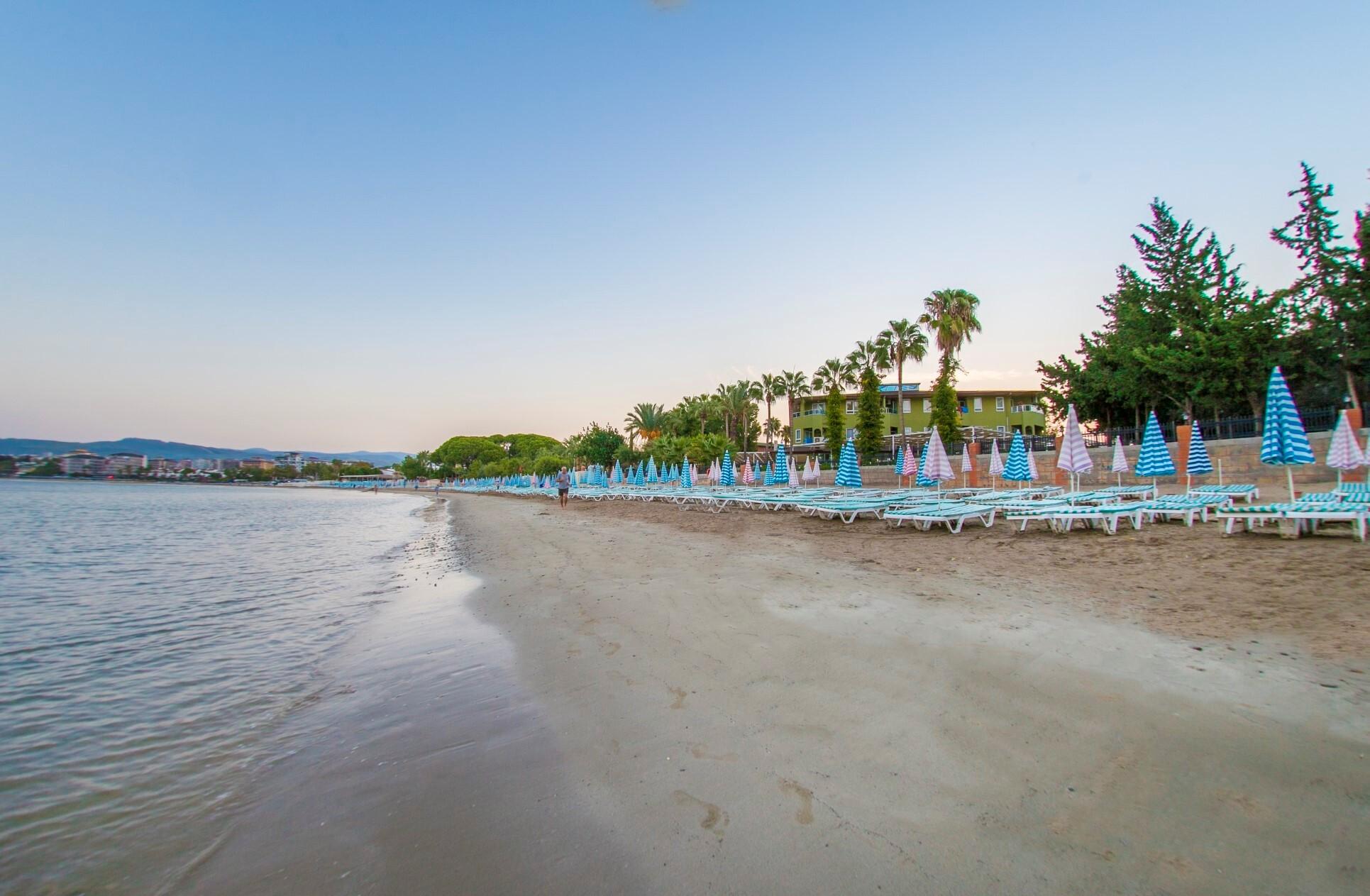 Lonicera World beach1